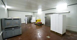 Stanza di conservazione frigorifera Fotografie Stock Libere da Diritti