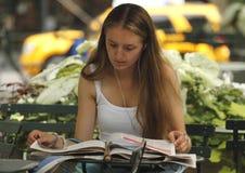Stanza di lettura nella sosta del Bryant Fotografia Stock Libera da Diritti