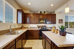 Stanza elegante moderna della cucina con l'isola Fotografia Stock