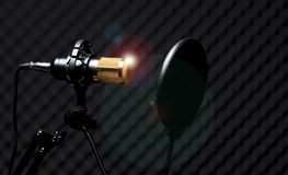 Stanza fonoassorbente della parete del condensatore del microfono immagini stock
