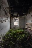 Stanza libera abbandonata con il letto - hotel abbandonato Immagine Stock Libera da Diritti