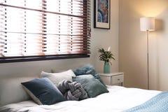 Stanza moderna interna con i ciechi di finestra e del letto matrimoniale immagini stock