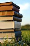 Stapel alte Bücher draußen Lizenzfreie Stockfotos