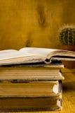 Stapel alte Bücher in Folge Lizenzfreies Stockbild