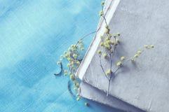 Stapel alte Bücher mit gelber Mimose blüht Blaue Pastellverarbeitung Stockbild