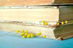 Stapel alte Bücher mit gelber Mimose blüht Gelbe Pastellverarbeitung Stockbild