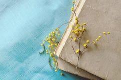 Stapel alte Bücher mit gelber Mimose blüht Gelbe Pastellverarbeitung Stockfotos