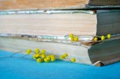 Stapel alte Bücher mit gelber Mimose blüht Weiche Filterverarbeitung Lizenzfreie Stockfotos