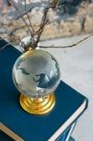 Stapel alte Bücher, Niederlassungen im Vase, Glaskugel, Schmutzziegelstein Lizenzfreies Stockbild