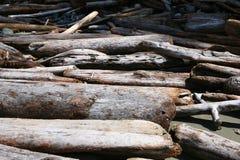 Stapel av Driftwood royaltyfri bild