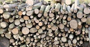 Stapel av klippt trä Arkivbild