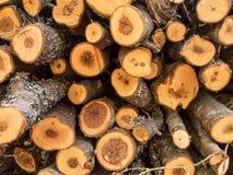 Stapel av trä Arkivbilder