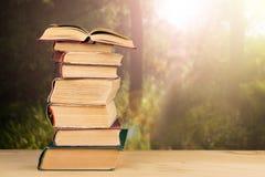 Stapel Bücher über dem natürlichen Hintergrund Lizenzfreie Stockbilder