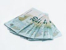 Stapel bankbiljetten met een waarde van 20 die Euro op een witte achtergrond wordt geïsoleerd Royalty-vrije Stock Foto