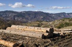 Stapel Bauholz in einem Schlamm auf einem Hügel Stockfotografie