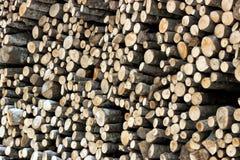 Stapel Brennholz Stockbild