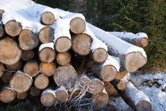 Stapel Brennholz im Winter-Schnee Stockbilder