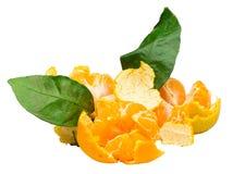 Stapel der frischen reifen Mandarine mit den kleinen Zweigen und den Blättern stockbild