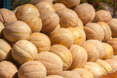 Stapel der Kantalupenmelone (Cucumis melo) Stockfotografie