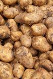 Stapel der Kartoffeln Stockbild