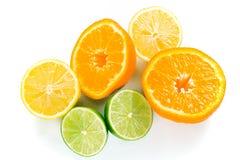 Stapel der nassen Zitrusfrucht Lizenzfreies Stockbild