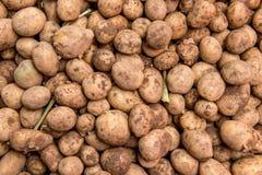 Stapel der organischen Kartoffel lizenzfreies stockbild
