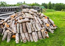 Stapel des Bauholzes, gehackt hinunter Bäume am Wald im Sommer Stockfoto