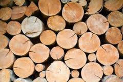 Stapel des Brennholzes Stockfotografie