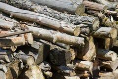 Stapel des Feuerholzes Stockfoto