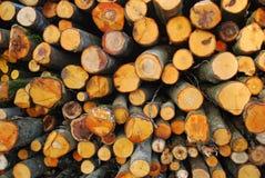 Stapel des gehackten Feuerholzes Stockbilder