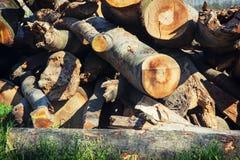 Stapel des gehackten Holzes Lizenzfreie Stockfotografie