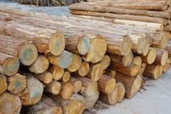 Stapel des Holzes Stockbilder