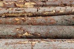 Stapel des Holzes Lizenzfreie Stockfotografie