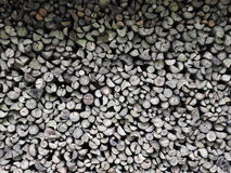 Stapel des Holzes im Wald Lizenzfreies Stockbild