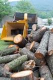 Stapel des Holzes und des Schleifers Lizenzfreie Stockfotos