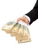 Stapel des rumänischen Bargeldes Lizenzfreie Stockfotos