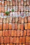 stapel för material för tegelstenbyggnadskonstruktion Royaltyfria Foton