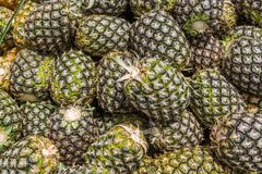 Stapel frische Ananas an einem Markt Stockbilder