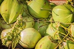 Stapel frische Kokosnüsse Stockfoto