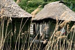 Stapel-Häuser von Benin lizenzfreie stockfotografie
