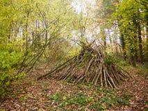Stapel hölzerne Bäume der Zweige häufen Waldwaldnaturniederlassungen an Lizenzfreie Stockfotografie