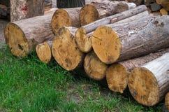 Stapel Holz Stockfotografie