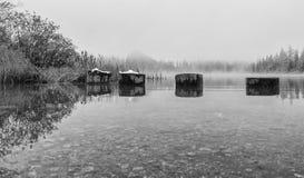 Stapel im Herbstsee Schwarzweiss Stockbild