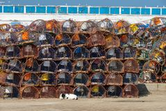 Stapel Krabbenfallen ist Essaouira-Hafen Stockbild