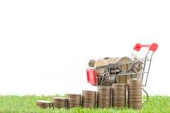 Stapel Münzen und Münzen auf Warenkorb Lizenzfreie Stockfotografie