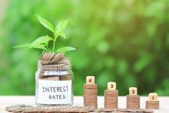 Stapel Münzengeld in der Glasflasche auf grünem Hintergrund, Zinssatzkonzept lizenzfreies stockfoto
