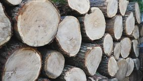 Stapel met brandhout stock footage