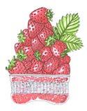 Stapel van aardbeien in een plastic container op witte hand-drawn illustratie Royalty-vrije Stock Foto