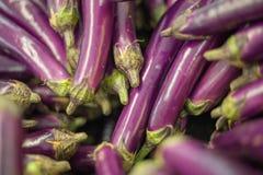 Stapel van aubergines bij landelijke markt in Mahebourg, royalty-vrije stock foto's