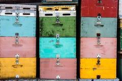 Stapel van bijenkorven Royalty-vrije Stock Afbeelding